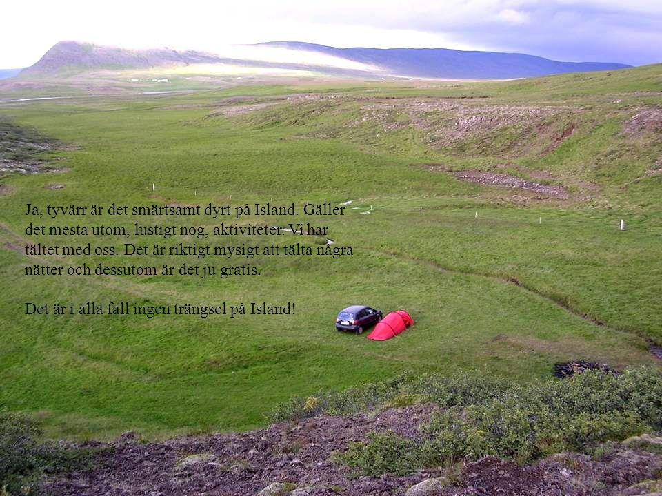 Ja, tyvärr är det smärtsamt dyrt på Island