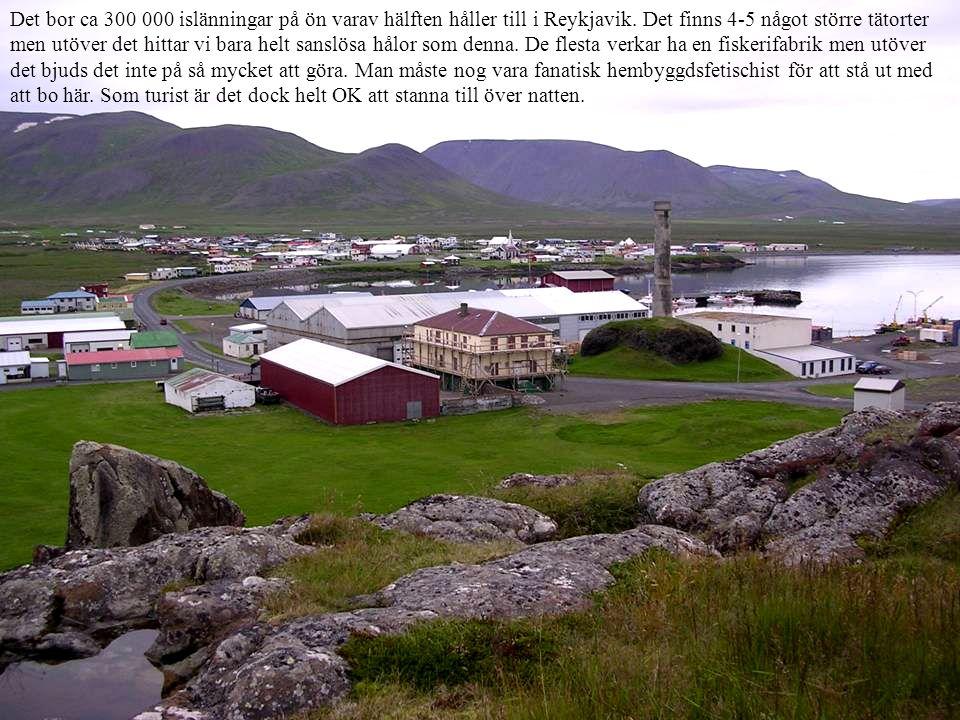 Det bor ca 300 000 islänningar på ön varav hälften håller till i Reykjavik.
