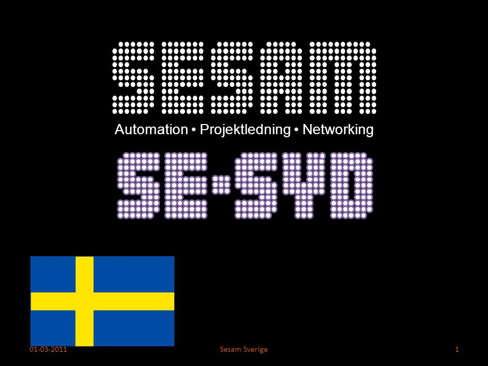 Automation • Projektledning • Networking