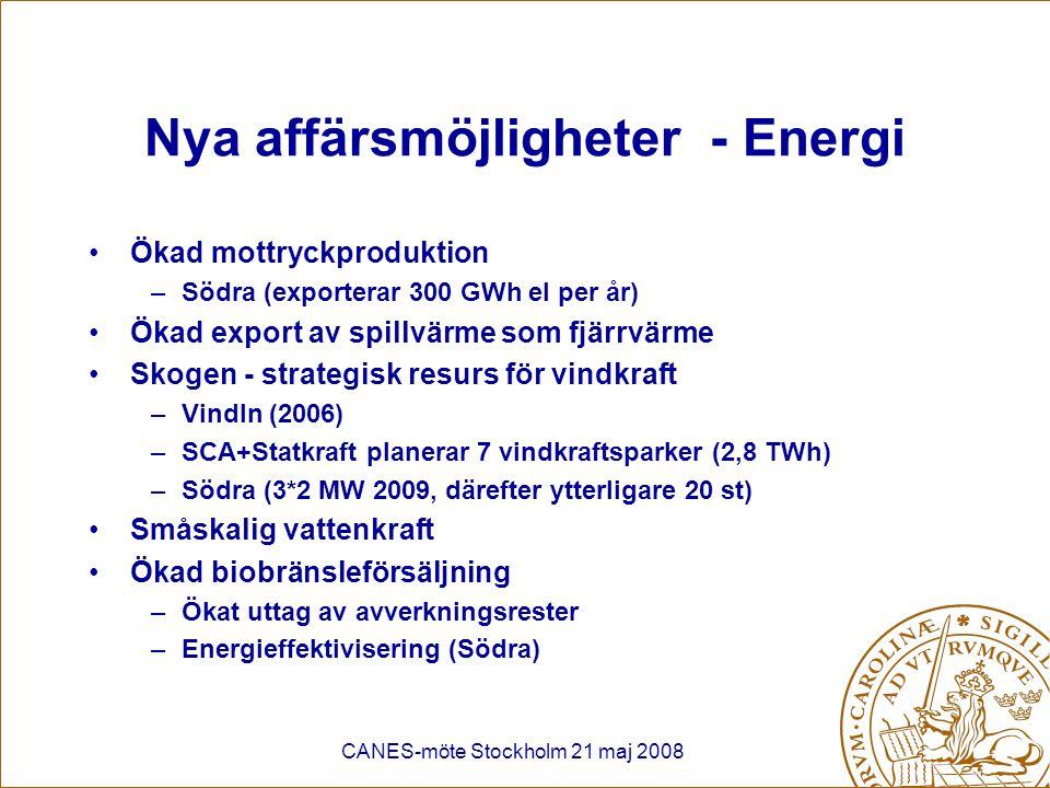 Nya affärsmöjligheter - Energi