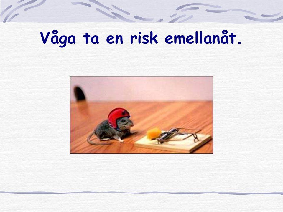 Våga ta en risk emellanåt.
