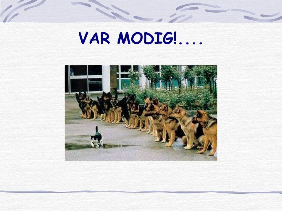 VAR MODIG!....
