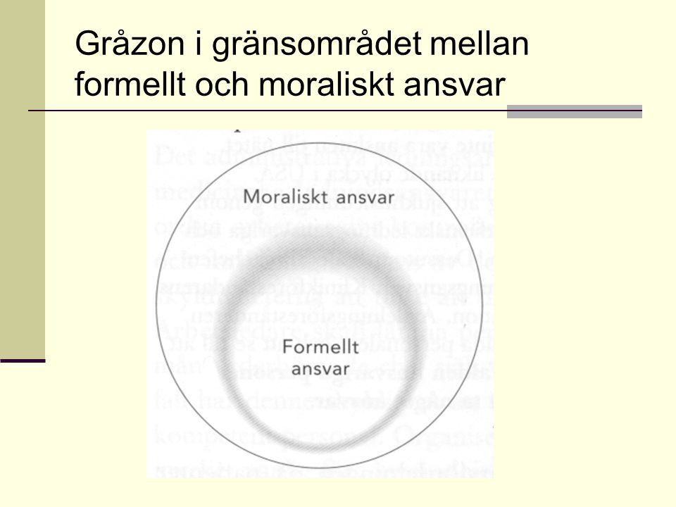 Gråzon i gränsområdet mellan formellt och moraliskt ansvar