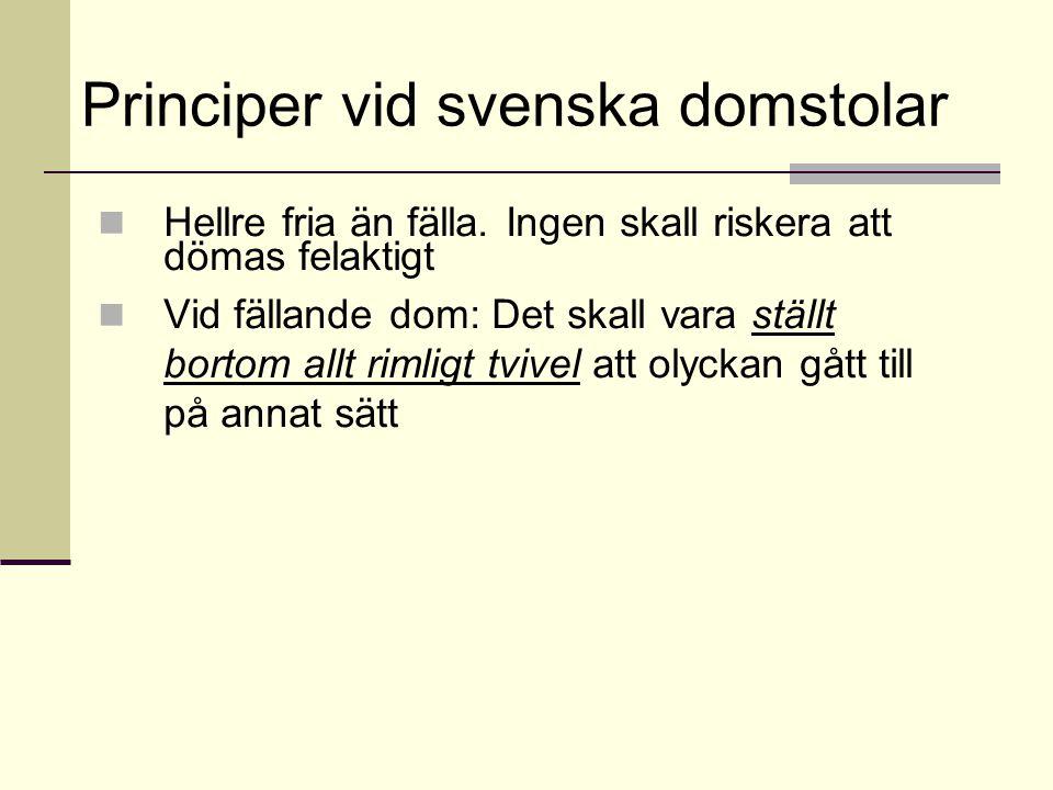 Principer vid svenska domstolar