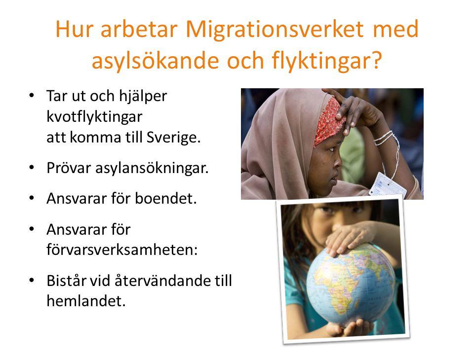 Hur arbetar Migrationsverket med asylsökande och flyktingar