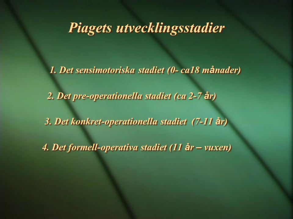 Piagets utvecklingsstadier