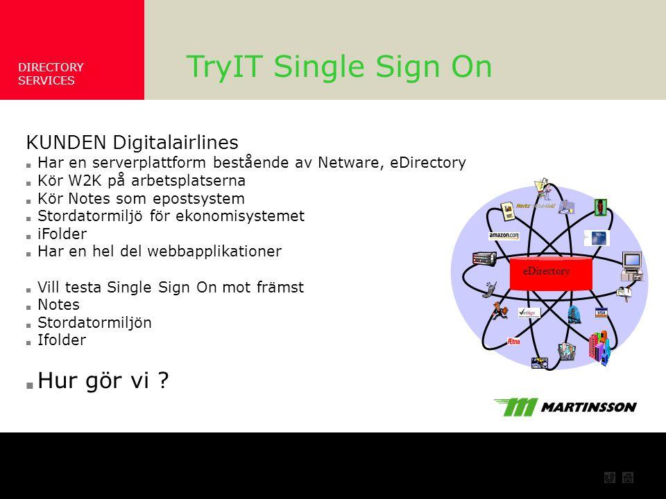 TryIT Single Sign On Hur gör vi KUNDEN Digitalairlines Ett Scenario