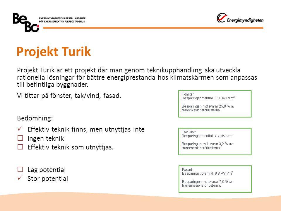 Projekt Turik
