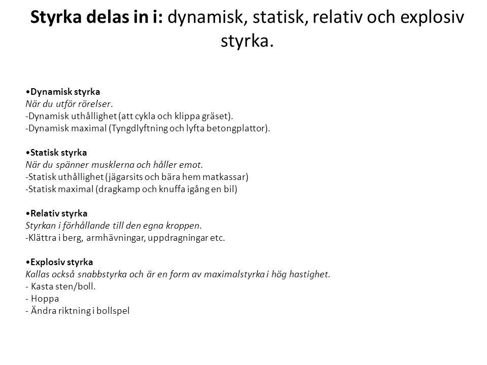 Styrka delas in i: dynamisk, statisk, relativ och explosiv styrka.