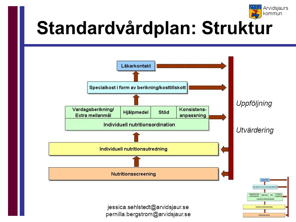 Standardvårdplan: Struktur