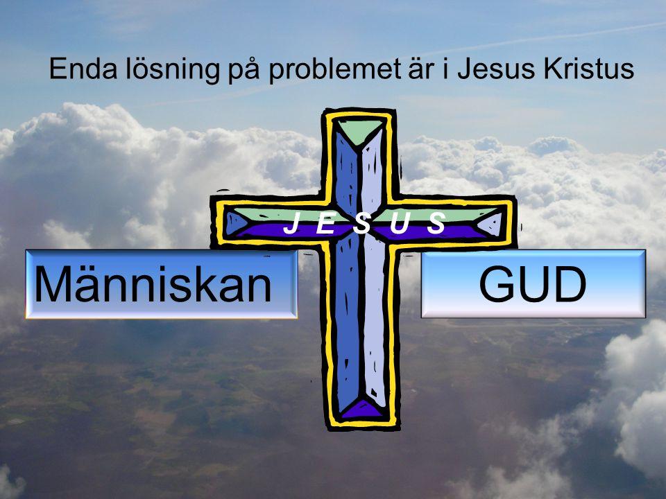 Enda lösning på problemet är i Jesus Kristus