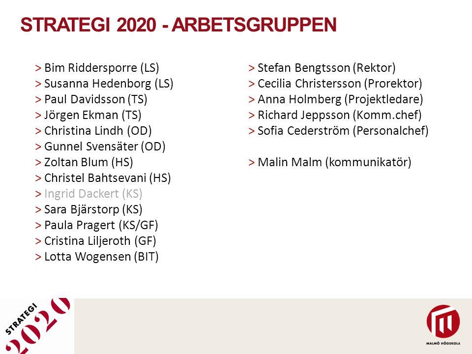 Strategi 2020 - Arbetsgruppen