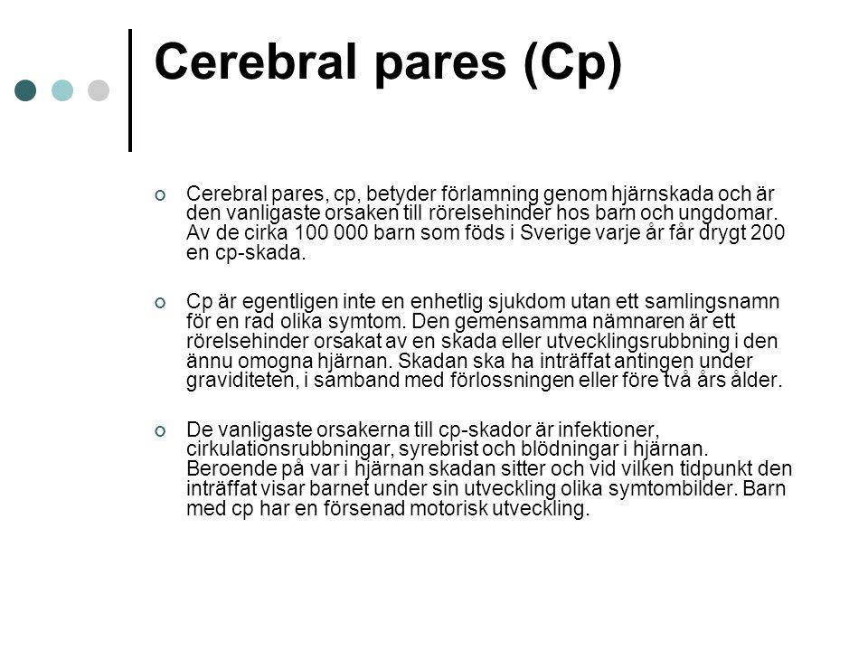Cerebral pares (Cp)