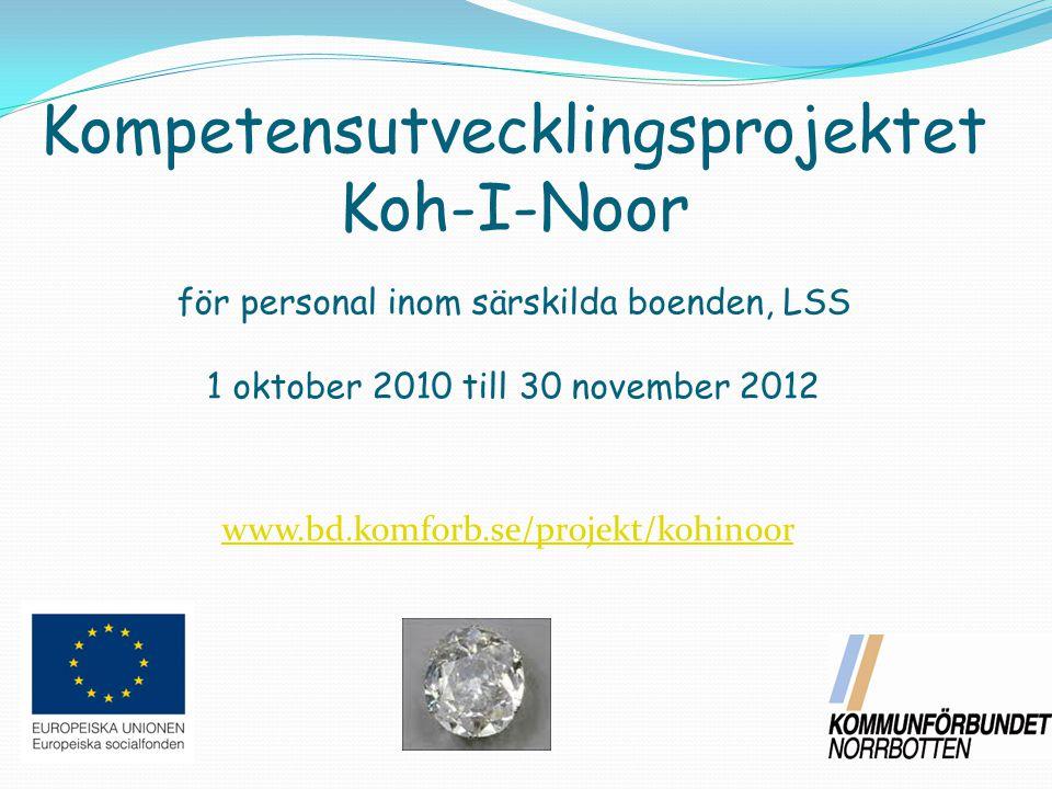 Kompetensutvecklingsprojektet Koh-I-Noor