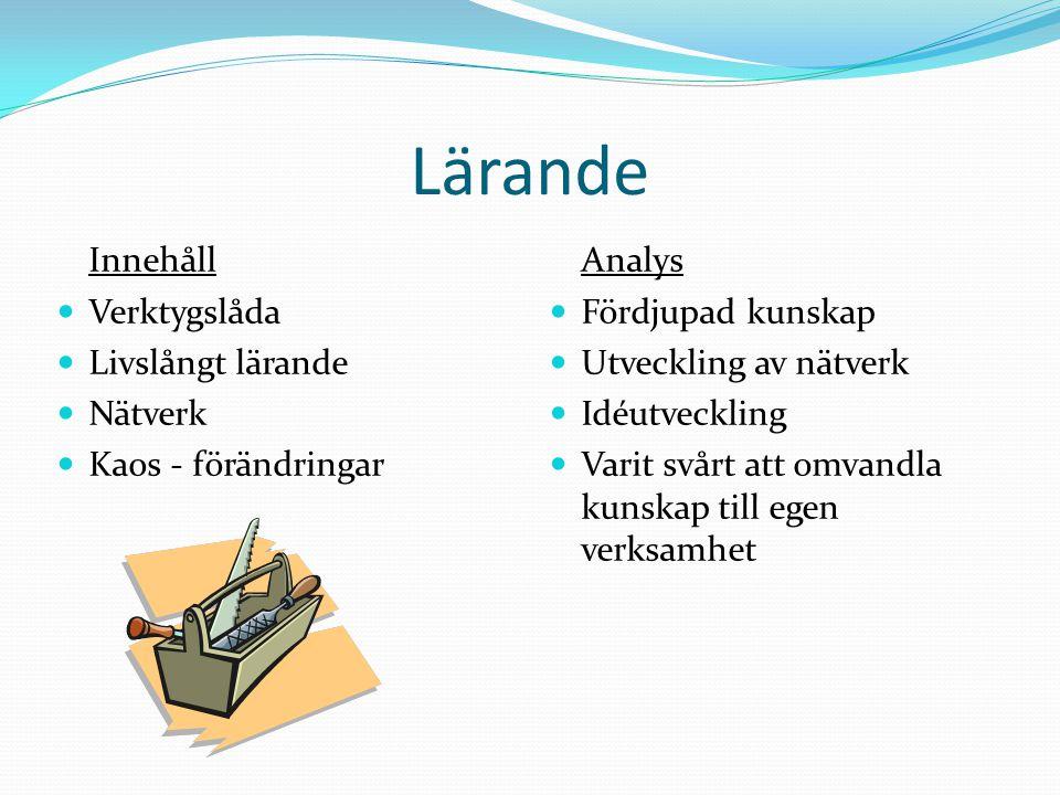 Lärande Innehåll Analys Verktygslåda Livslångt lärande Nätverk