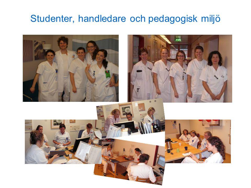 Studenter, handledare och pedagogisk miljö