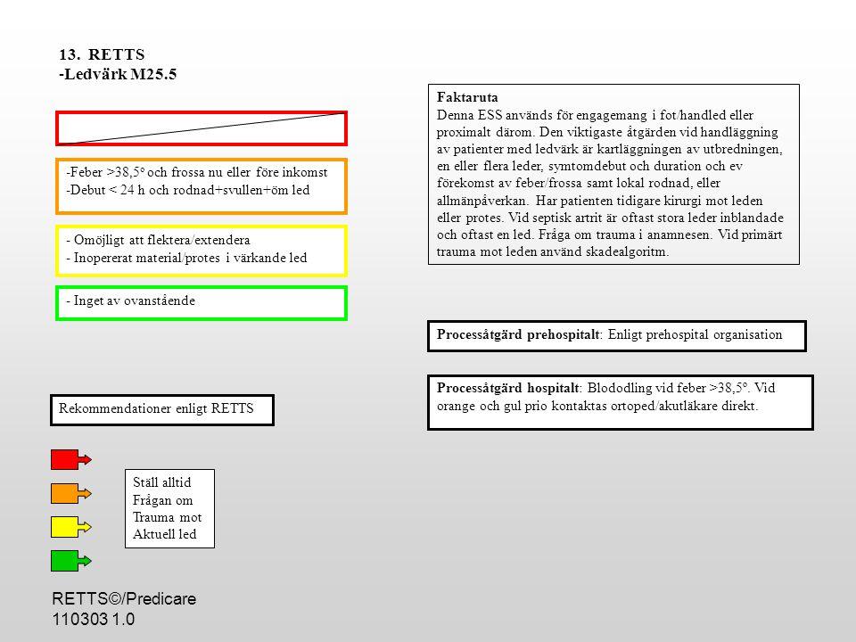 13. RETTS Ledvärk M25.5 RETTS©/Predicare 110303 1.0 Faktaruta