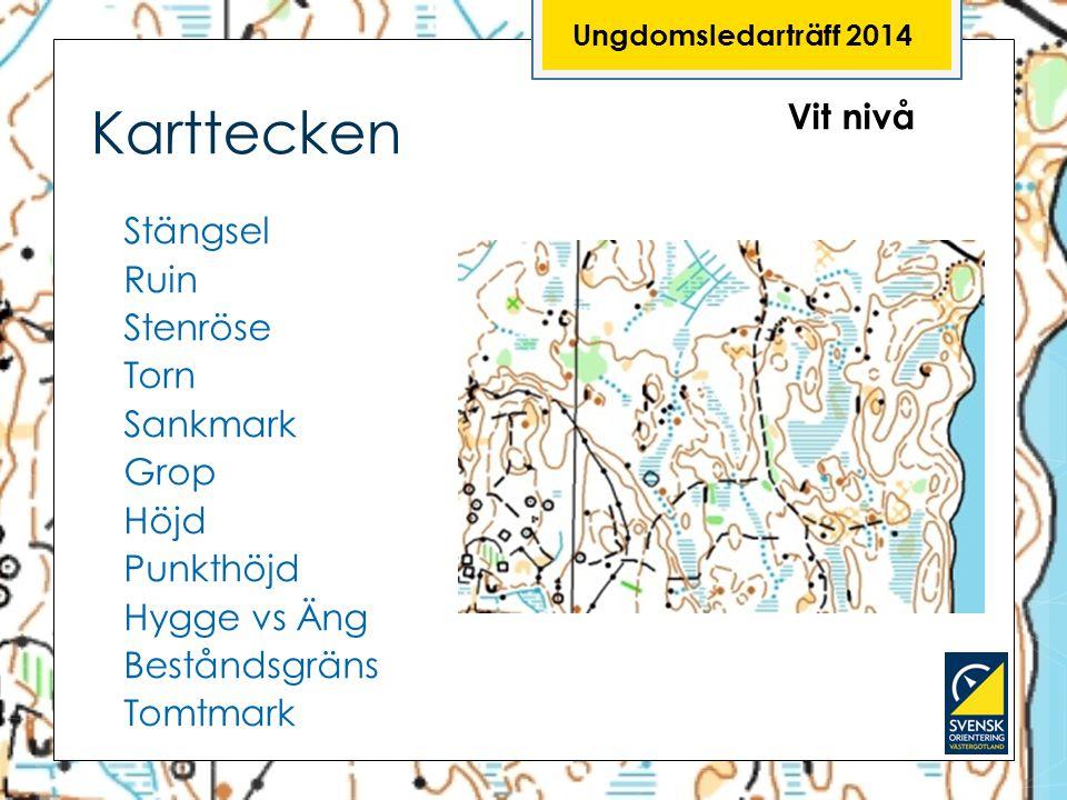 Ungdomsledarträff 2014 Karttecken. Vit nivå.