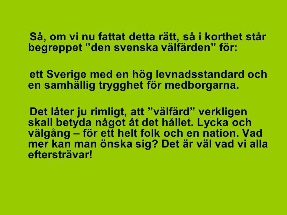 Så, om vi nu fattat detta rätt, så i korthet står begreppet den svenska välfärden för: