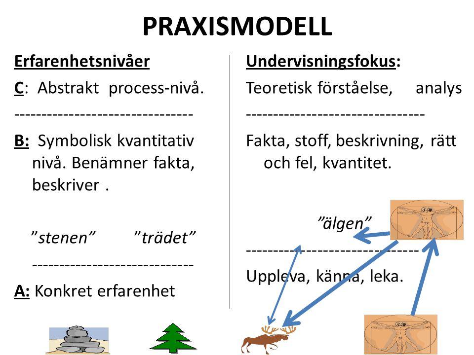 PRAXISMODELL Erfarenhetsnivåer C: Abstrakt process-nivå.