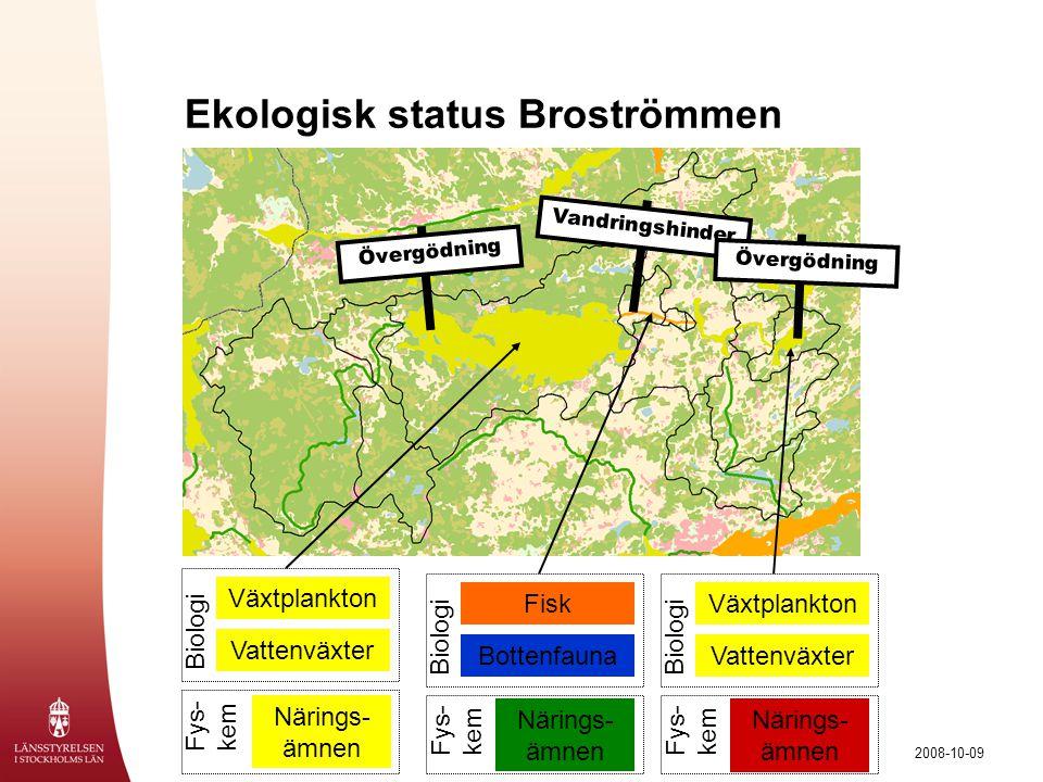 Ekologisk status Broströmmen