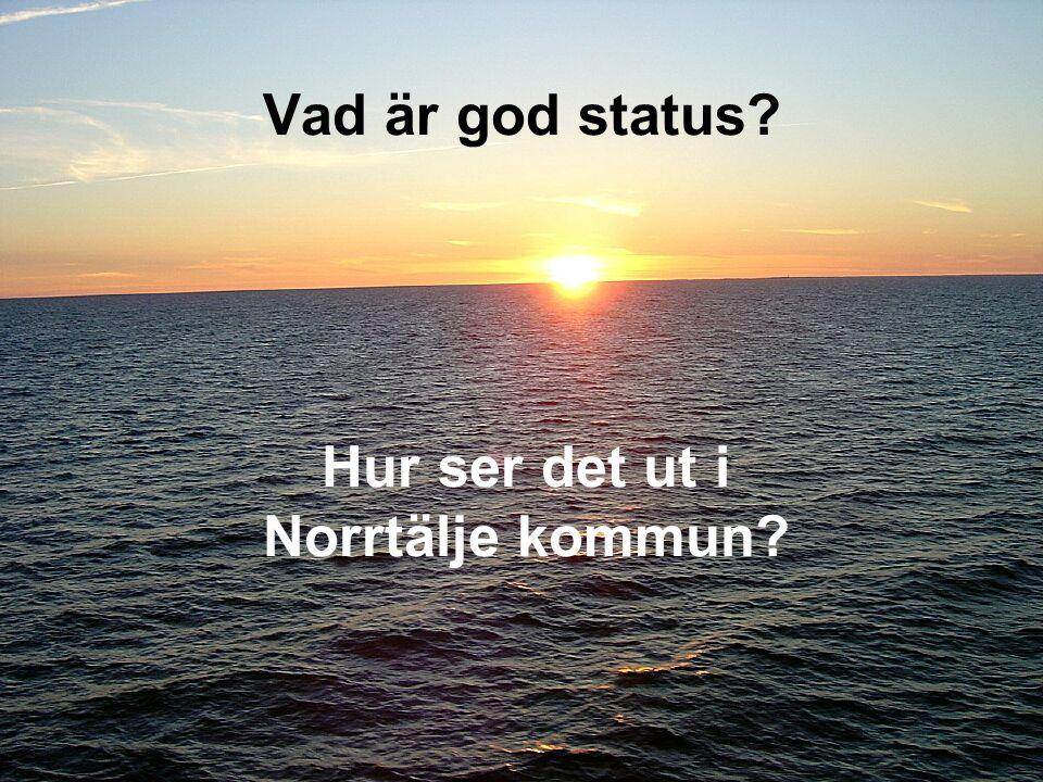Hur ser det ut i Norrtälje kommun