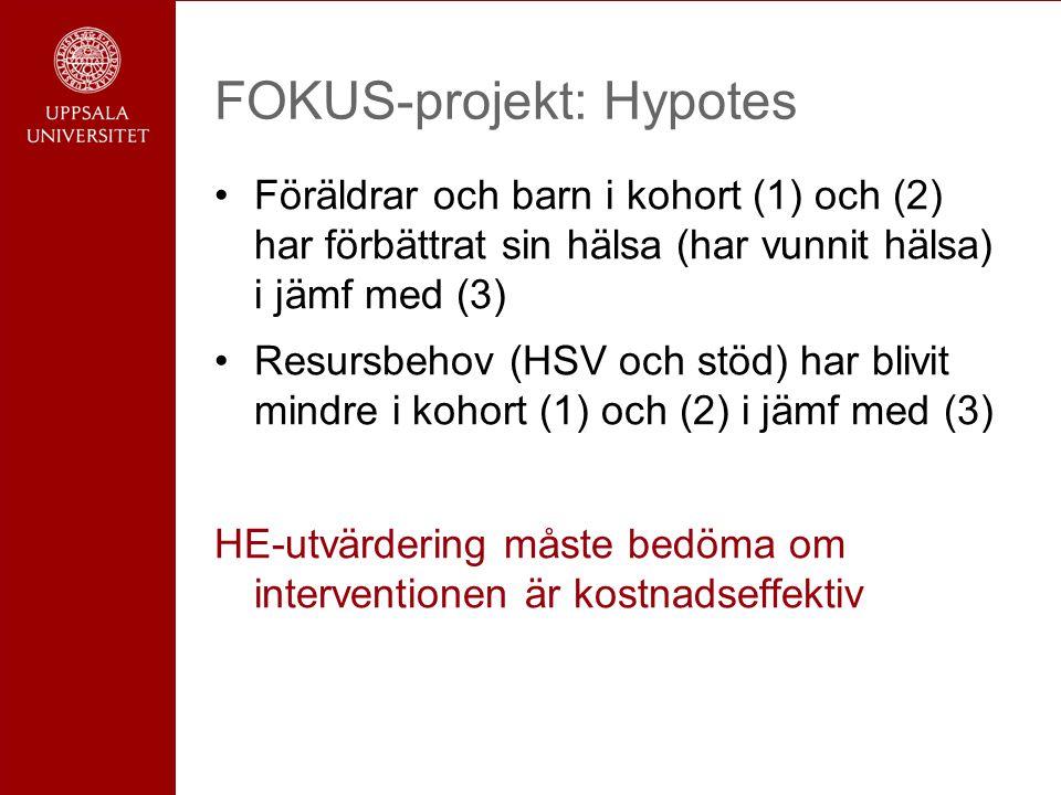 FOKUS-projekt: Hypotes