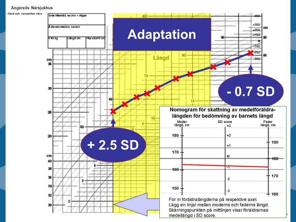 Adaptation - 0.7 SD + 2.5 SD 0-24 mths