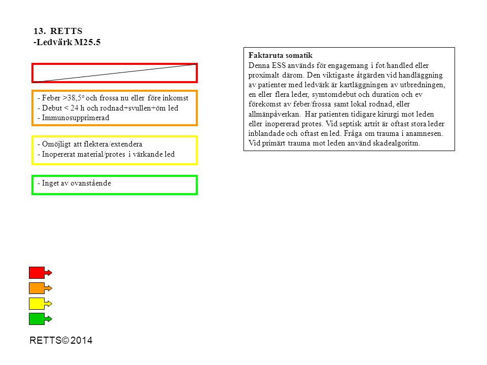 13. RETTS Ledvärk M25.5 RETTS© 2014 Faktaruta somatik
