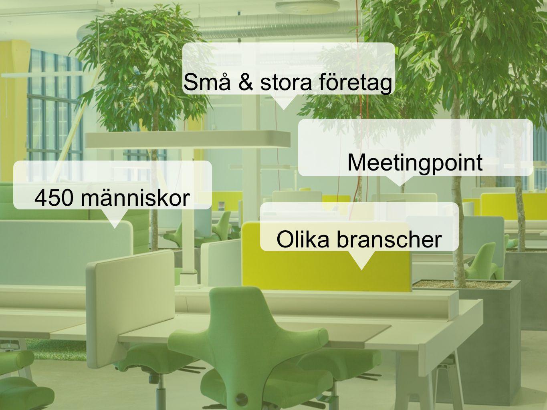 Små & stora företag Meetingpoint 450 människor Olika branscher