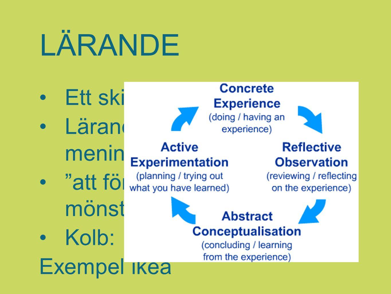 LÄRANDE Ett skifte har skett Lärande = meningsskapande