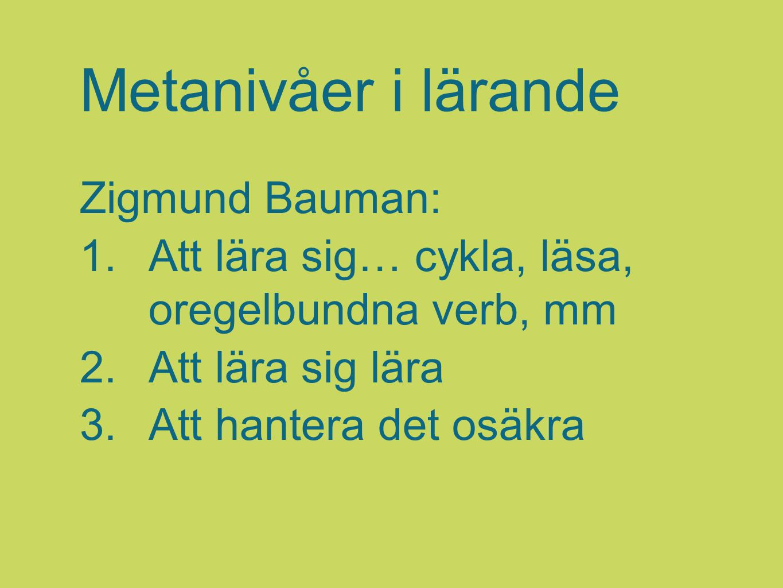 Metanivåer i lärande Zigmund Bauman: