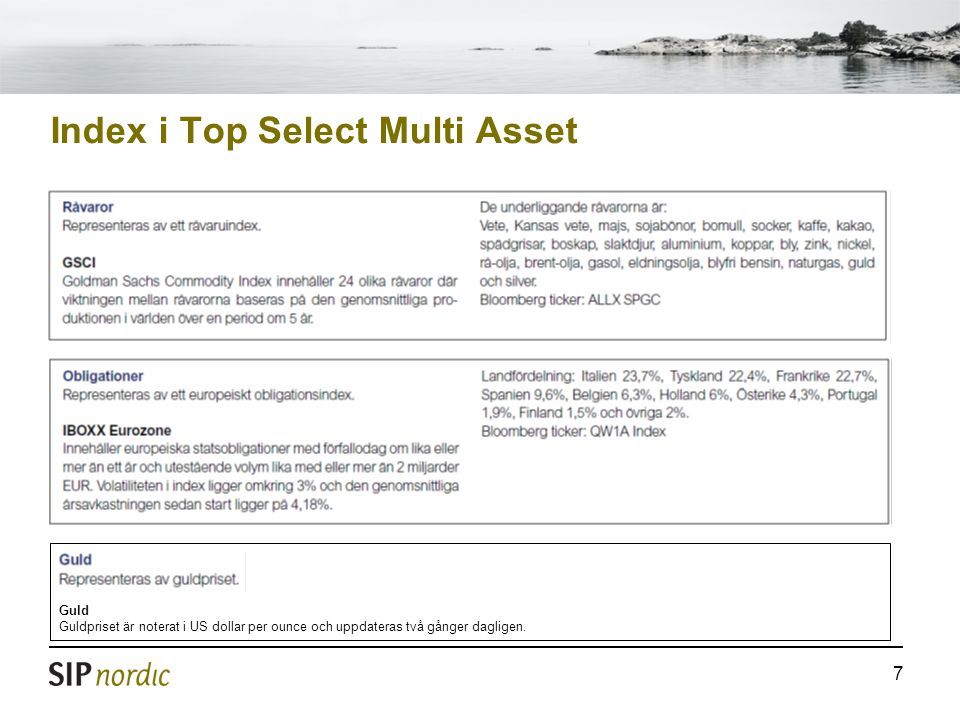 Index i Top Select Multi Asset