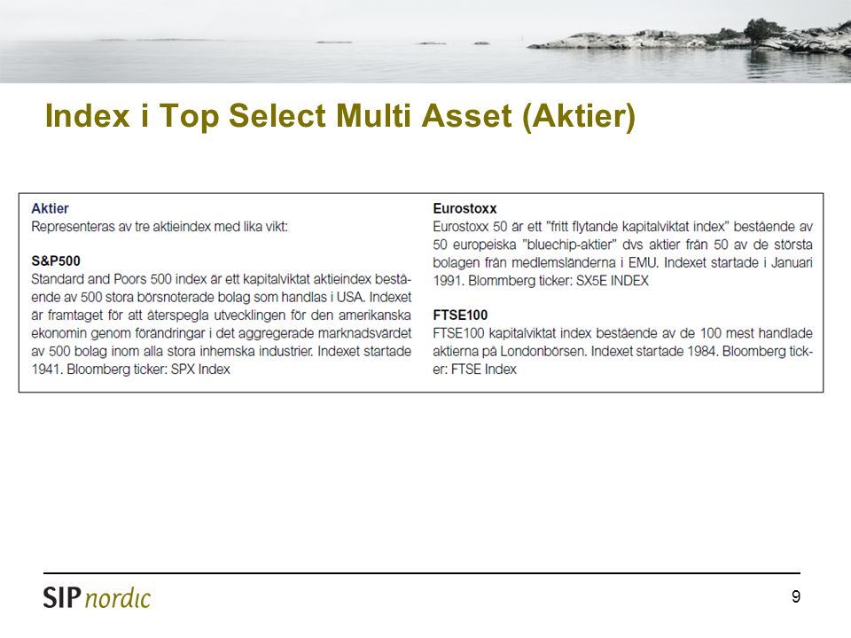 Index i Top Select Multi Asset (Aktier)
