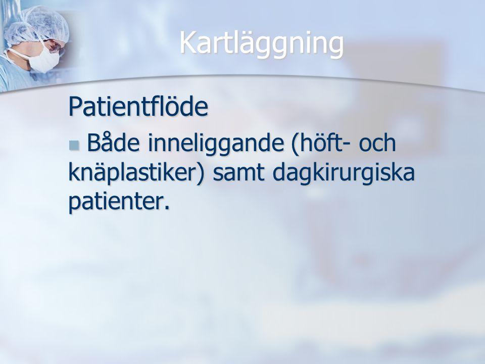Kartläggning Patientflöde