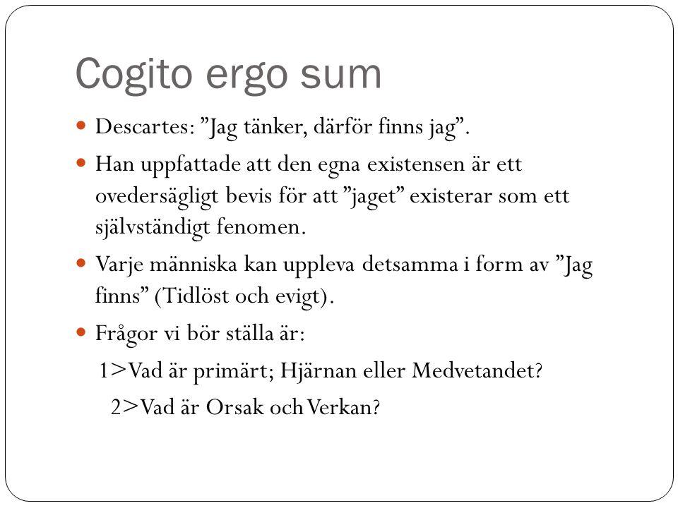Cogito ergo sum Descartes: Jag tänker, därför finns jag .