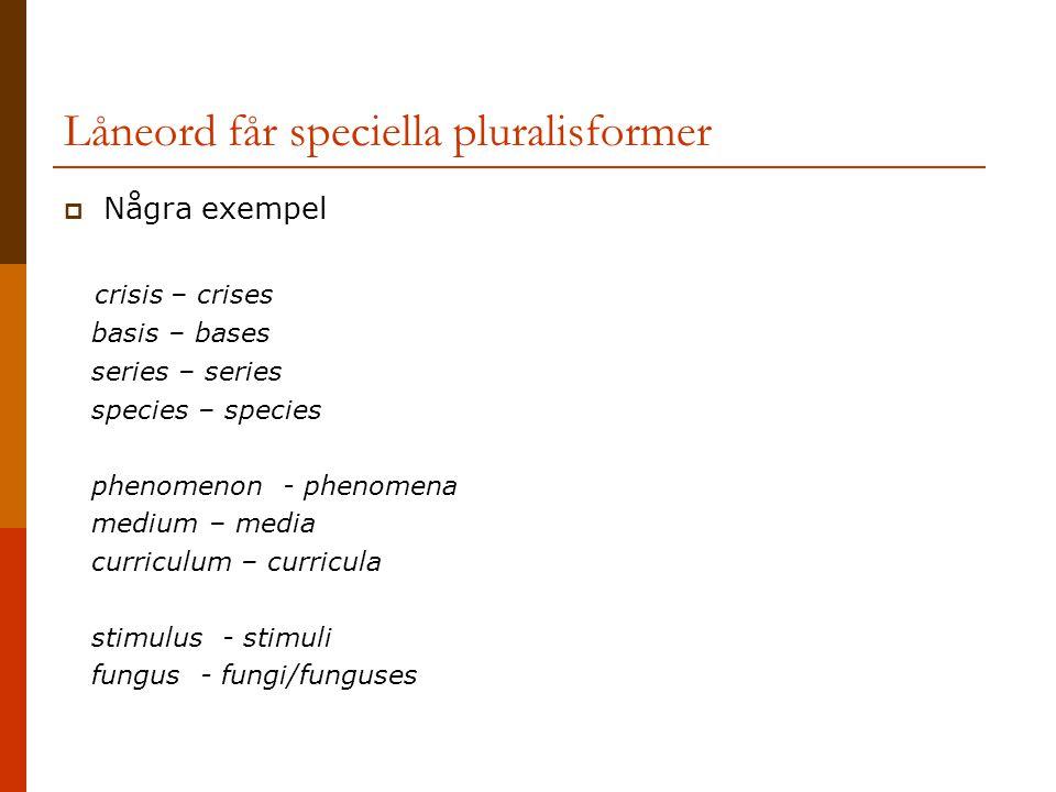 Låneord får speciella pluralisformer