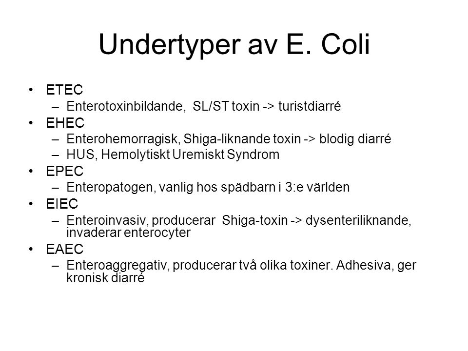 Undertyper av E. Coli ETEC EHEC EPEC EIEC EAEC