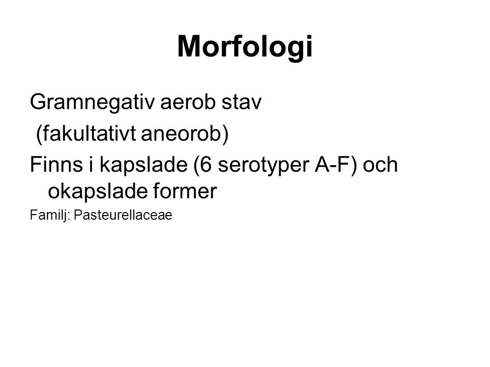 Morfologi Gramnegativ aerob stav (fakultativt aneorob)