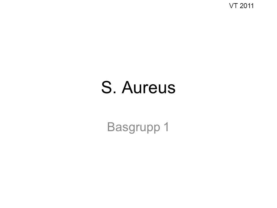 VT 2011 S. Aureus Basgrupp 1