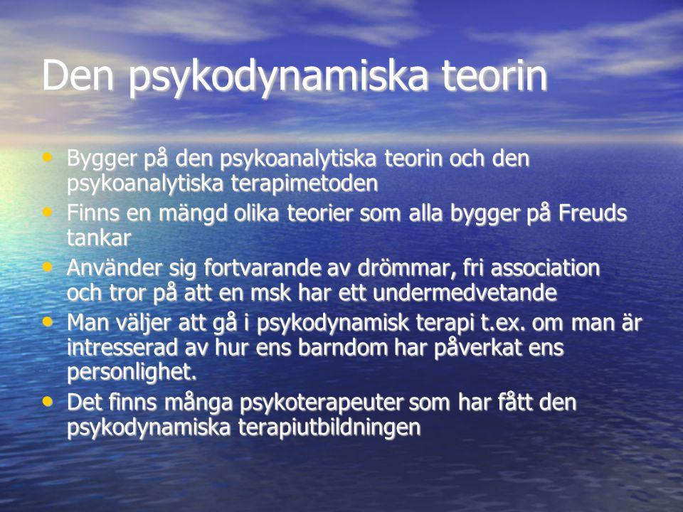 Den psykodynamiska teorin