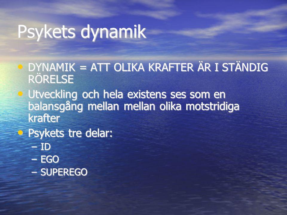 Psykets dynamik DYNAMIK = ATT OLIKA KRAFTER ÄR I STÄNDIG RÖRELSE