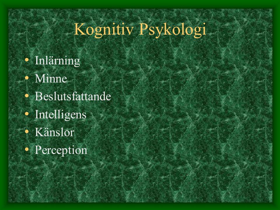 Kognitiv Psykologi Inlärning Minne Beslutsfattande Intelligens Känslor