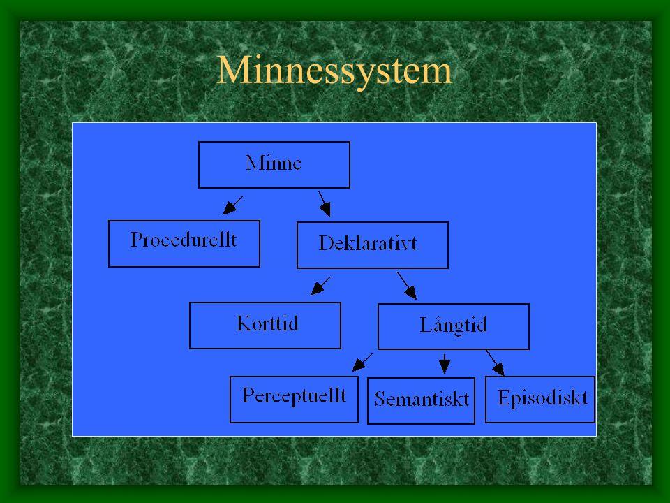 Minnessystem