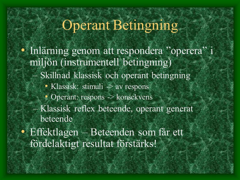 Operant Betingning Inlärning genom att respondera operera i miljön (instrumentell betingning) Skillnad klassisk och operant betingning.
