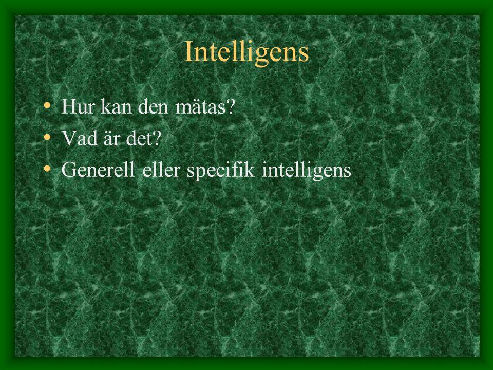 Intelligens Hur kan den mätas Vad är det