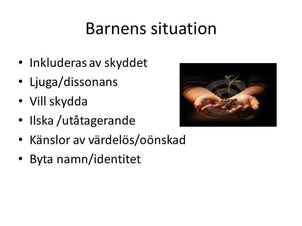 Barnens situation Inkluderas av skyddet Ljuga/dissonans Vill skydda