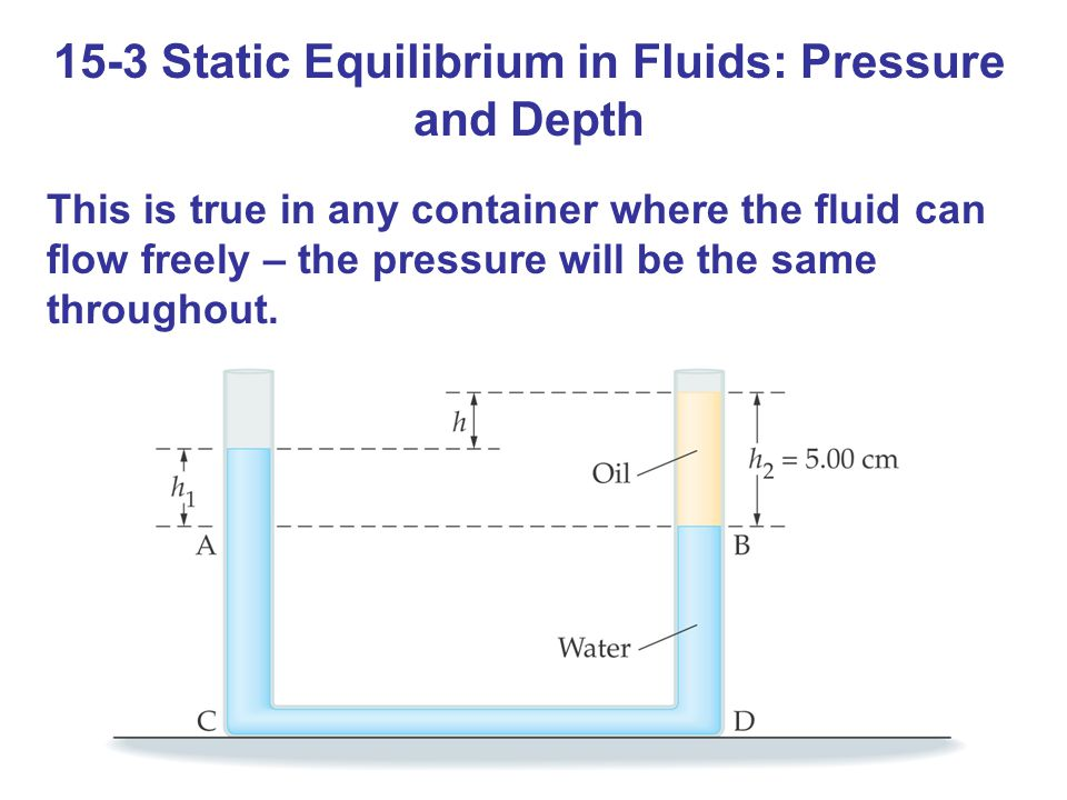 15-3 Static Equilibrium in Fluids: Pressure and Depth