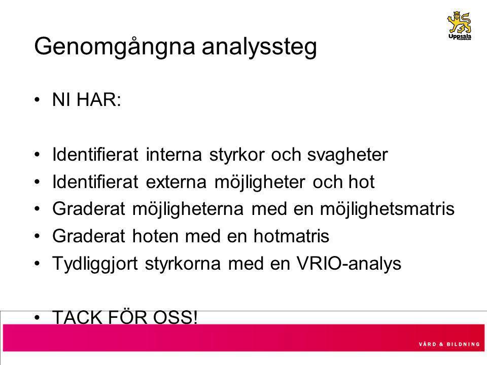 Genomgångna analyssteg