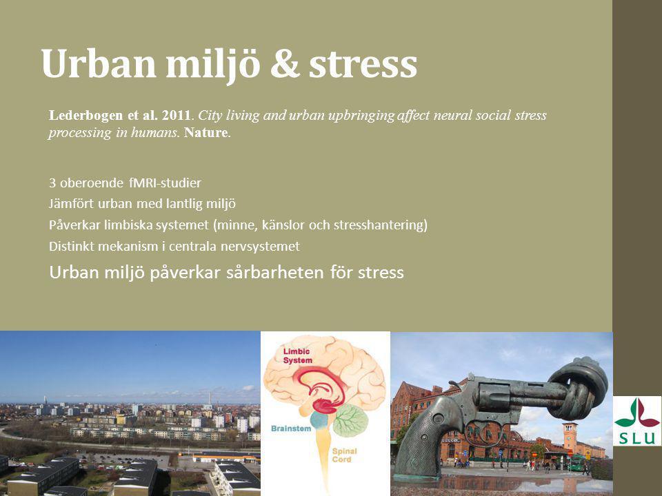 Urban miljö & stress Urban miljö påverkar sårbarheten för stress